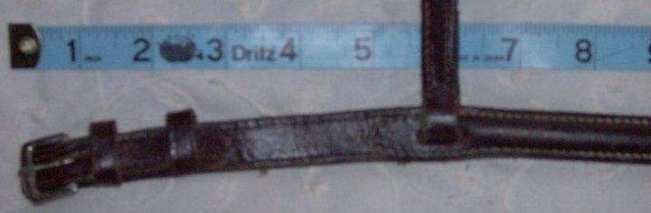 photo of one end of the noseband