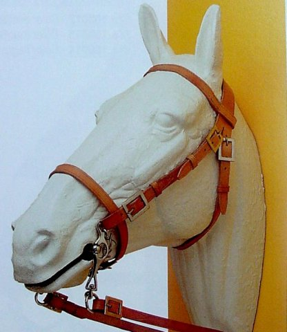 photo of a modern spanish bridle