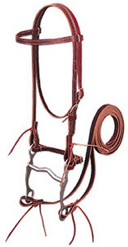 photo of modern western bridle